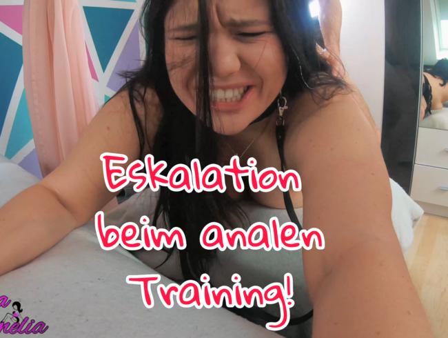 Eskalation beim analen Training!